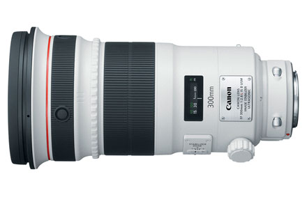 EF 300mm f/2.8L IS USM | Telefoto view 2